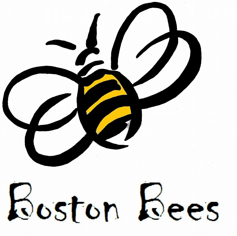 Boston Bees